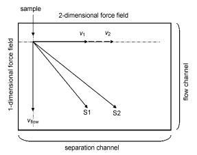 图5芯片二维分离机理示意图