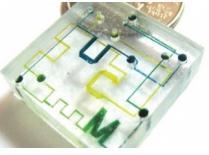 聚苯乙烯(PS)  微流控芯片