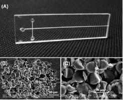 典型的纤维电泳微芯片的照片和玻璃纤维包装的微通道的横截面的SEM图像。