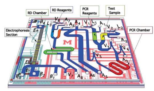 来自Pal等具有集成电泳分析的微流控PCR芯片,