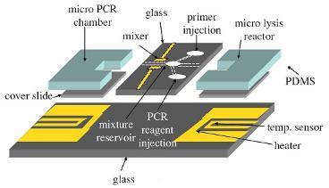PCR芯片中的薄膜加热器