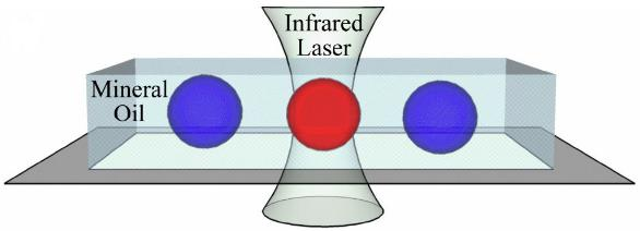 激光加热PCR液滴膜