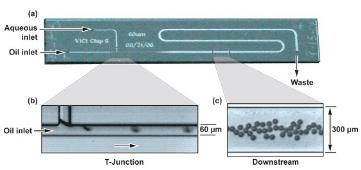 初期数字微流体装置