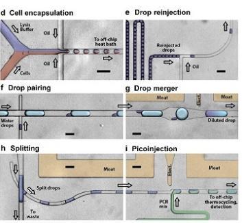 用于单细胞分析的微流体液滴qRT-PCR装置来自Eastburn等,Analytical Chemistry,2013
