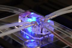 细胞生物学微细加工技术
