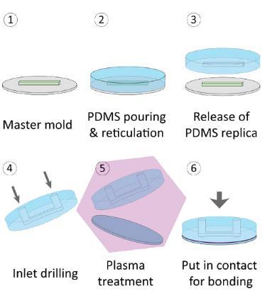 PDMS微流控芯片