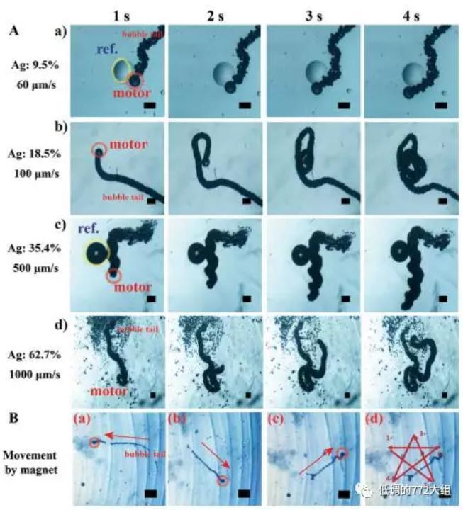 图3. 不同Ag颗粒表面浓度的自驱动微马达驱动速度和在磁场作用下的五角星运动轨迹
