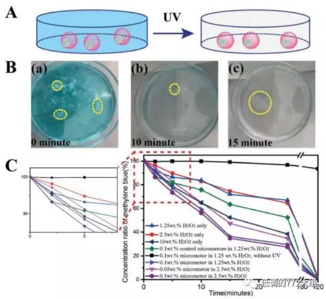 图4. 自驱动颗粒的亚甲基蓝降解研究