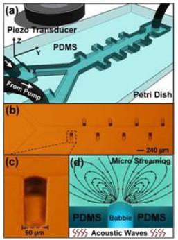 超声主动微流体混合