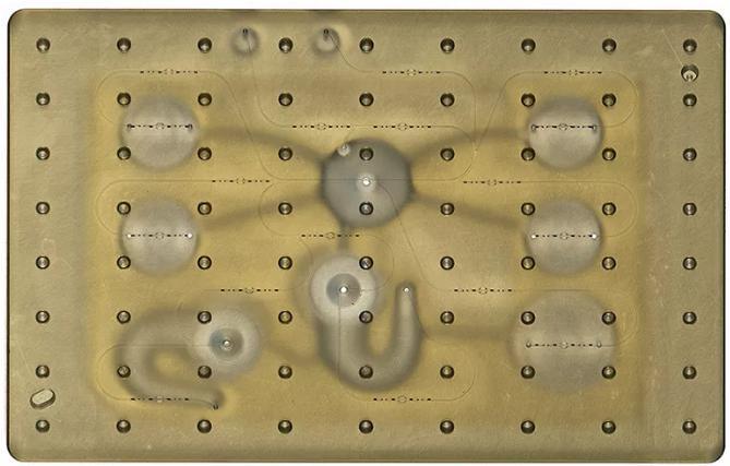 开放式微流控系统:同时研究多个器官系统上的药物效应