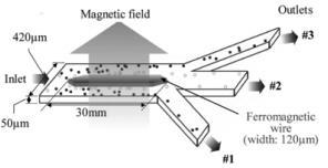 用于连续微流体颗粒分选的软磁元件