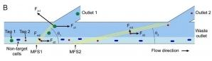 用于连续多重微流控颗粒分选的软磁元件