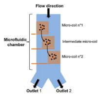 用于微流控颗粒分选的电磁体