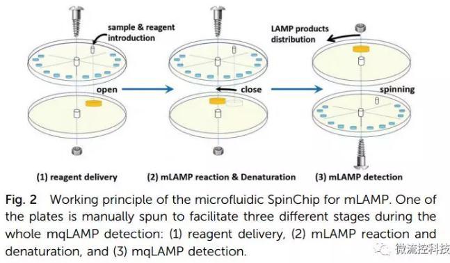 纸基聚合物基混合可旋转微流控芯片实现多种传染性疾病的及时定量诊断
