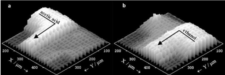 """图7:设计用于在893cm-1(a)和882cm-1(b)的拉曼谱带处合成乙酸乙酯的微流体装置的拉曼强度的3D图。用这种技术可以密切监测试剂(乙酸和乙醇)的位置,在感兴趣的位置,例如此处提供的T形接头。来自Fletcher等人的图片""""使用倒置拉曼显微分光计监测微反应器内的化学反应。"""""""