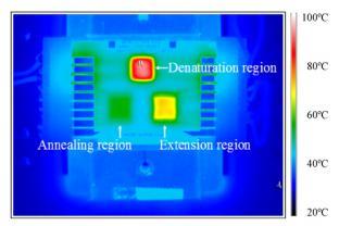 用于PCR微流体装置的微热控制单元的红外图像