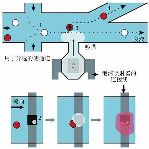 单细胞裂解