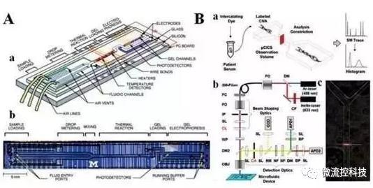 图5:分析cNAs的微流控系统