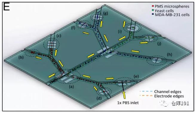 图7. 全功能微流控纳米喷墨电子检测平台示意图