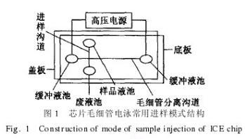 芯片毛细管电泳常用进样模式结构