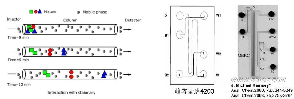 微流控细胞分离芯片