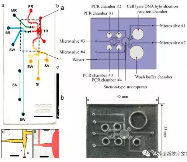 POCT 核酸芯片
