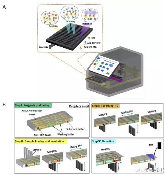 图2 液滴阵列微流控芯片免疫分析系统。A. 分析仪器结构示意图;B. 分析原理示意图。