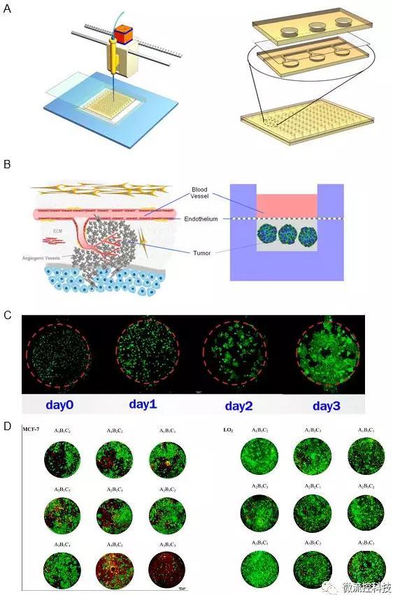 图4A.微流控肿瘤微阵列药物测试系统包含一种复合式结构开放式微流控芯片以及移液工作站