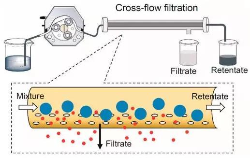 图3 交叉流过滤装置示意图