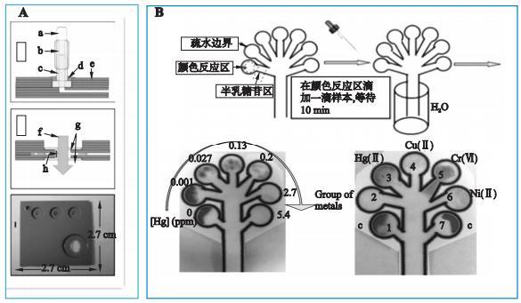 图1重金属检测微流控芯片系统