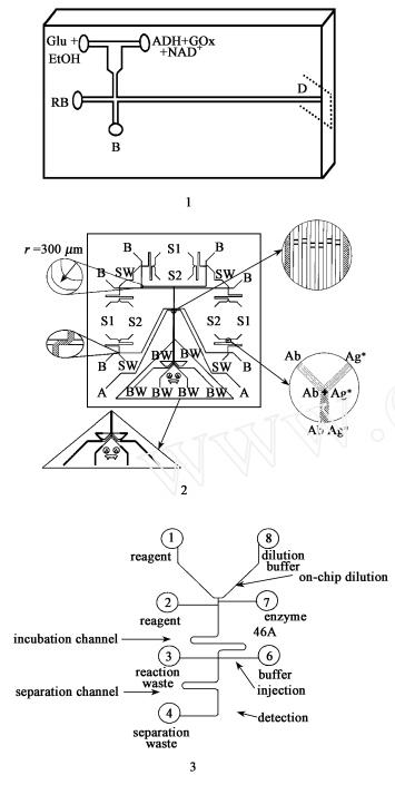集成有 T型和 Y型柱前反应器的电泳芯片