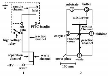 集成有十字型柱前反应器的电泳芯片