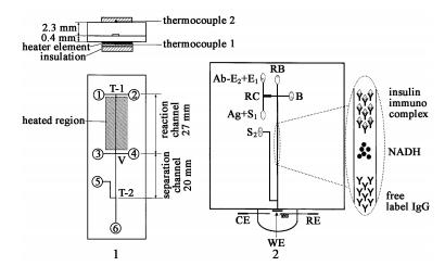 同时集成柱前和柱后反应管道的电泳芯片