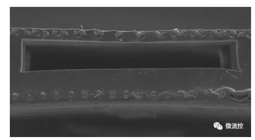 双面单氧和器单元的电子显微镜扫描图像