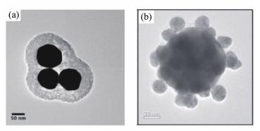 纳米三聚体的TEM图