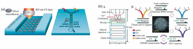 在微流芯片内激光制造SMA的示意图