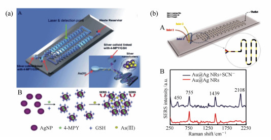用来检测砷离子的微流芯片示意图