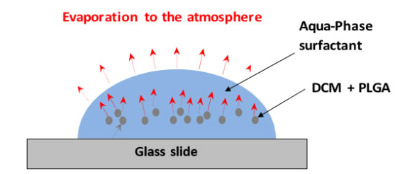 显示DCM从液滴通过连续相进入大气的传输路线的代表性图表