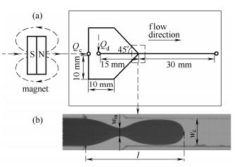 Y 聚焦型微通道结构