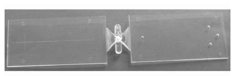 图1微流控芯片塑件排布图