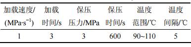 表1 单轴压缩实验条件