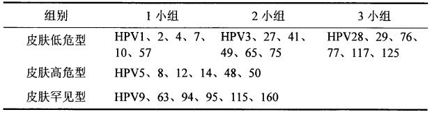表130种HPV型别具体分组