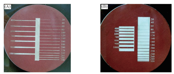 Fig.2Fabricatedmicrochannels(unitinmicrometers)(A)andbarriers(B)withvariedwidths(unitinmicrometers)
