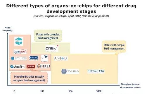 不同类型的器官芯片技术在不同的药物研发阶段所发挥的功能