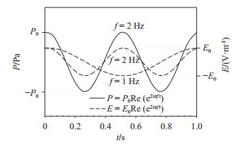 图 2   压力和电场随时间的变化