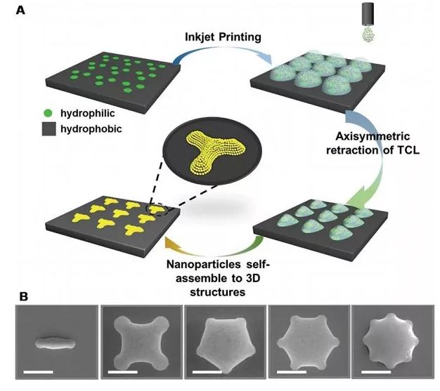 亲疏水图案化基底用于纳米粒子自组装