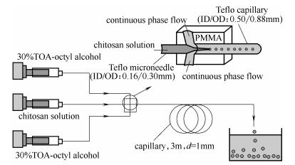 同轴环管型微流控装置