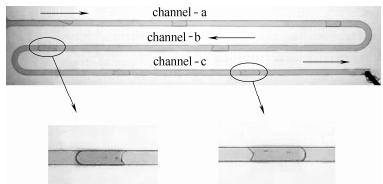 图6方案1:弹状流