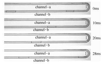 图11方案1:圆弧诱导产生的弹状流