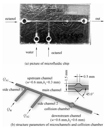 图1微流控芯片与结构参数